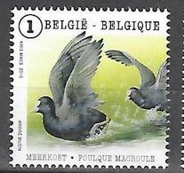 OCB Nr 4501 Fauna Buzin Meerkoet MAcroule Coot  MNH - Unused Stamps
