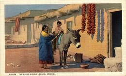 THE FIRST RIDING LESSON ARIZONA   USA  ANE DONKEY EZEL ESEL MULES Donkeycollection - Indianer