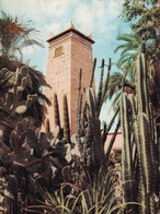 Marrakech - Jardins Majorelle - Formato Grande Viaggiata – FE190 - Unclassified