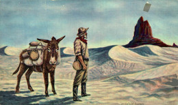 USA LANDMARKS OF THE DESSERT  TIJERAS NEW MEXICO   ANE DONKEY EZEL ESEL MULES Donkeycollection - Esel