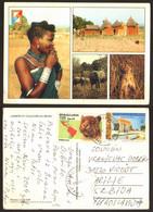 Benin Girl Elephant Lion  Nice Stamp  #29095 - Benin