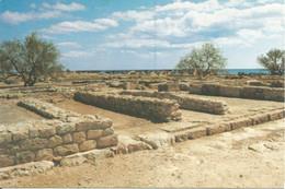 (TUNISIA) KERKOUANE, ANTIQUE PLACE - New Postcard - Tunisia