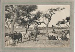 CPA - CAYOR (Sénégal) - Aspect D'un Puits En 1900 - Senegal