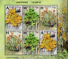 Belarus - 2019 - Flora - Lichens - Mint Miniature Stamp Sheet - Belarus