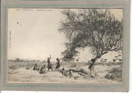 CPA - SENEGAL - Aspect Des Peulhs Au Puits En 1900 - Senegal