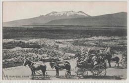 MT. RUAPEHU FROM WAIMARINO RAILWAY STATION - BEATTIE & CO - MOA SERIES - Nouvelle-Zélande