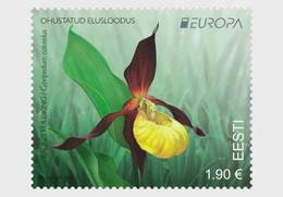 Estonia Estland  MNH ** 2021 Europa 2021 - Endangered National Wildlife Only Flora - Estonia