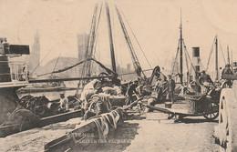 """Ostende """"Arrivée Des Pêcheurs"""" - Oostende"""