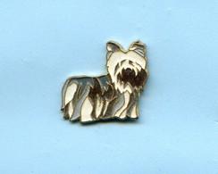 PINS  PIN  HUND YORKSHIRE DOG PH680 - Animals