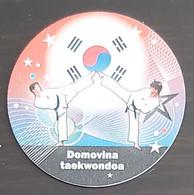 World Handball Championship - Croatia 2009, South Korea - Balonmano