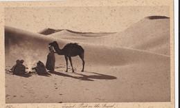 AN62 Egypt, Post In The Desert - Altri