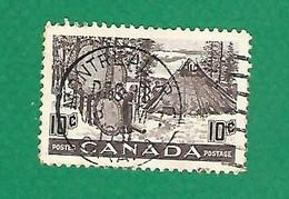 1950 N° 241 SECHARGE DES PEAUX  10 C.  OBLITÉRÉ - Usados