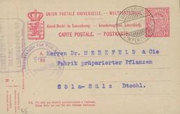Luxembourg - Luxemburg - Carte-Postale 1917 - Interi Postali