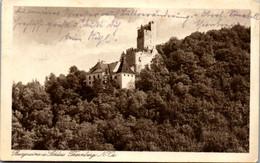 9896 - Niederösterreich - Burgruine Und Schloss Thernberg - Gelaufen 1924 - Neunkirchen