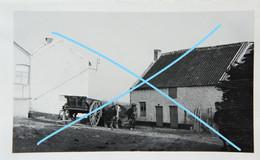 Photox2 FLAVION Région Anthée Florennes Morville Onhaye Philippeville Ferme Attelage 1936 - Lugares