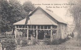 Sint-Truiden Exposition Provinciale Du Limbourg à Saint-Trond (1907) Pavillon Des Eaux Et F (envoyé à Mont Saint André ) - Sint-Truiden