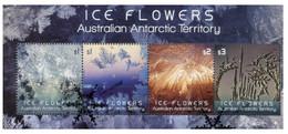 (PP 9) Australia - Mini-Sheet Cancelled - Ice Flowers (AAT) - Usados