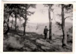 Photo Originale Joli Flou Impressionniste Sur Homme De Dos En Forêt Vers 1950. - Luoghi