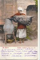EGYPTE - LE CAIRE : Sakka Mettant L'eau Au Sir - Cairo