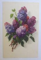 Blumen, Flieder,   1930, Meissner & Buch ♥ (32933) - Ohne Zuordnung