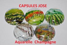Nouvelle Série De 5 Capsules De Champagne GENERIQUE (Aquarelle Champagne) - Collections