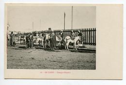 EGYPTE 006 LE CAIRE No 76 Groupe D'Aniers Long Du Trottoir  -  1900  Dos Non Divisé Bergeret - El Cairo