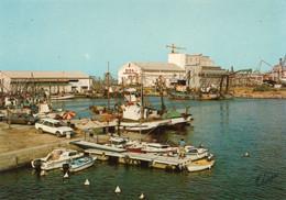 Port La Nouvelle - Le Port   / Non Circulé - Port La Nouvelle