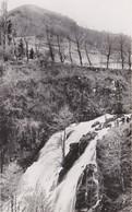 CHEYLADE Cascade Du Pont De La Roche - Sonstige Gemeinden