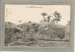 CPA - SENEGAL - Aspect De La Brousse En 1900 - Senegal