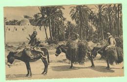 K829 - AFRIQUE - Scènes Et Types - Retour à L'Oasis - Unclassified