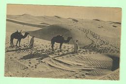 K833 - AFRIQUE - Scènes Et Types - Passage Des Dunes De Sable Au Désert - Unclassified