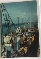 44 Le Croisic 1970  Bateaux De Peche Marins Préparatifs Pour La Peche A La Sardine Caisses - Le Croisic