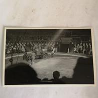 Circus - Cirque // Carte Photo - RPPC To Identify, Prob. Belgie No. 1. // Clowns Act 19?? - Circo