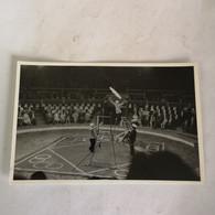 Circus - Cirque // Carte Photo - RPPC To Identify, Prob. Belgie No. 5. // High Wire Act.19?? - Circo