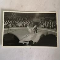 Circus - Cirque // Carte Photo - RPPC To Identify, Prob. Belgie No.6. // Mono Cycle Act.19?? - Circo