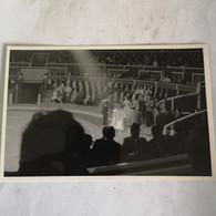 Circus - Cirque // Carte Photo - RPPC To Identify, Prob. Belgie No.10. // Sortie? 19?? - Circo