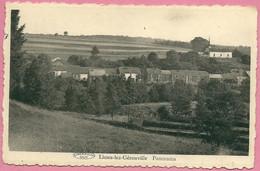 C.P. Limes-lez-Gérouville =  Panorama - Meix-devant-Virton