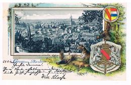 GRUSS AUS PFORZHEIM - ARMOIERIES - GIBIERS (carte Gaufrée) - Pforzheim