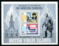 British Virgin Islands 1974 Birth Centenary Of Sir Winston Churchill MS MNH (SG MS324) - British Virgin Islands