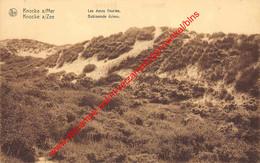 Les Dunes Fleuries - Bebloemde Duinen - Knokke - Knokke