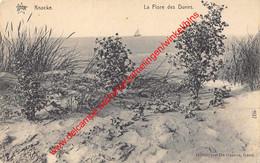 La Flore Des Dunes - Knokke - Knokke