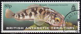 British Antarctic Territory 1999 Used Sc #279 80p Bernach - Used Stamps