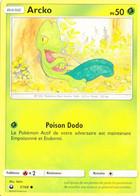 Carte Pokémon Arcko 7/168 PV50 - Pokemon