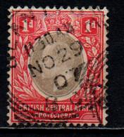 BRITISH CENTRAL AFRICA - 1903 - King Edward VII - USATO - Sonstige