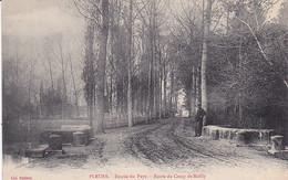 51 -- Pleurs -- Entrée Du Pays -- Route Du Camp De Mailly --- 3848 - Andere Gemeenten