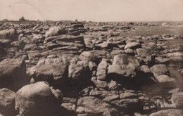 29 BRIGNOGAN-PLAGE Les Rochers - Brignogan-Plage