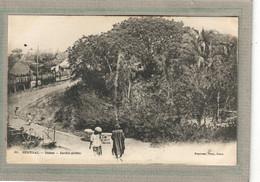 CPA - DAKAR (Sénégal) - Aspect Du Jardin Public En 1900 - Senegal