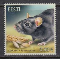 Estland 2020.Fauna - The Black Rat. Pf.** - Estonia