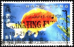Hong Kong 1993 Mi 705 Goldfish (2) - Used Stamps
