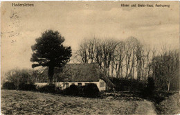 CPA AK HADERSLEBEN Hänsel Un Gretel-Haus Aastrupweg DENMARK (565543) - Danemark